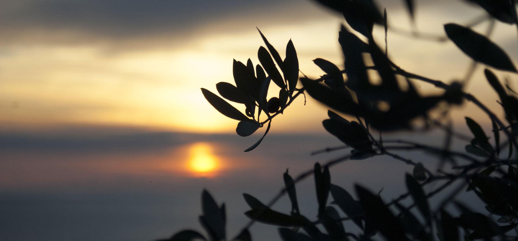 tramonto a pisciotta